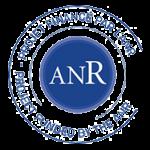 Présentation du projet INFO-RSN